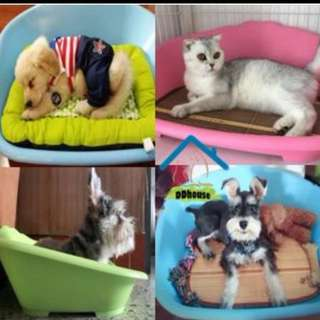 Indoor Outdoor Easy Clean Plastic Pet Bed with Soft Pad Plastic dog bed Plastic Cat Beds