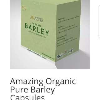 Amazing Organic Pure Barley Capsules