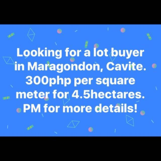 Cavite Lot for Sale (Clean title)