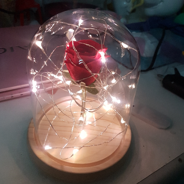 Customised Glass Dome