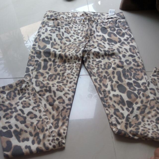Zara Girls Size 11/12