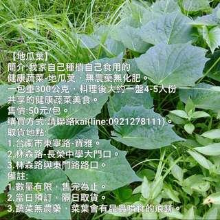 地瓜葉/蔬菜/健康/無毒/美食/料理/野菜/營養