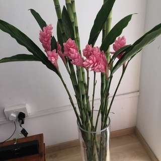 Lucky bamboo floral arrangement with vase