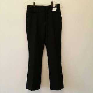 Dorothy perkins Work Pants Regular Fit UK10