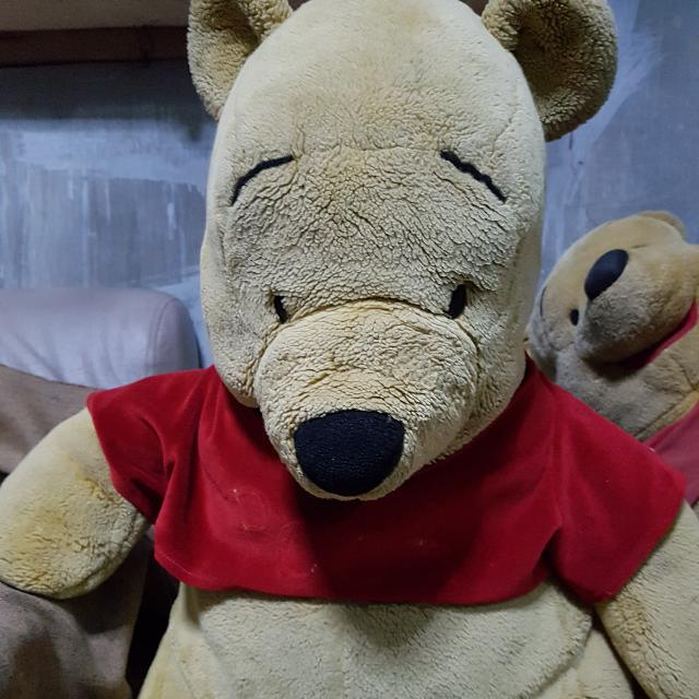 Authentic Winnie The Pooh