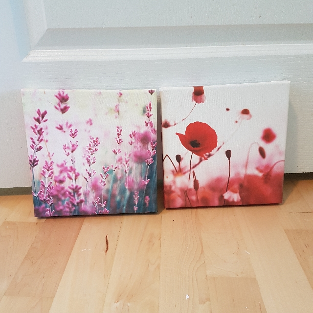 Flower Canvas Art Pictures  2 For $20