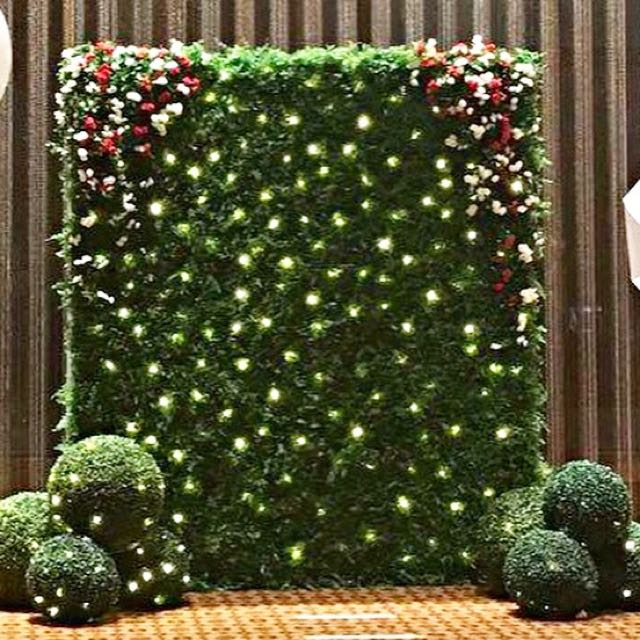Wedding Green Wall Photobooth Backdrop Design Amp Craft