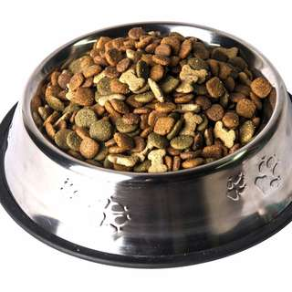 Stainless Steel Dog Bowl 1 Cup Anti Slip Rubber