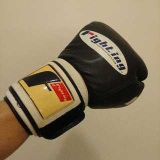 14oz Fighting Boxing Gloves