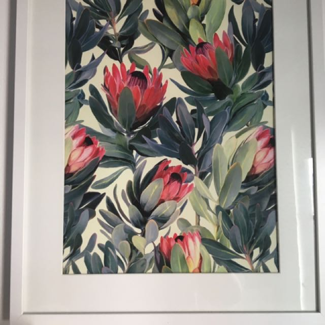 Beautiful print with frame