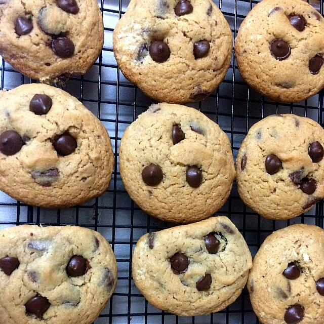 ONHAND CHEWY CHOCO CHIP COOKIES