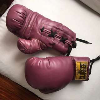 DT Boxing Gloves