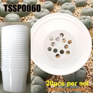 TSSP0060 White Small Seedling Pots - 20pcs per set