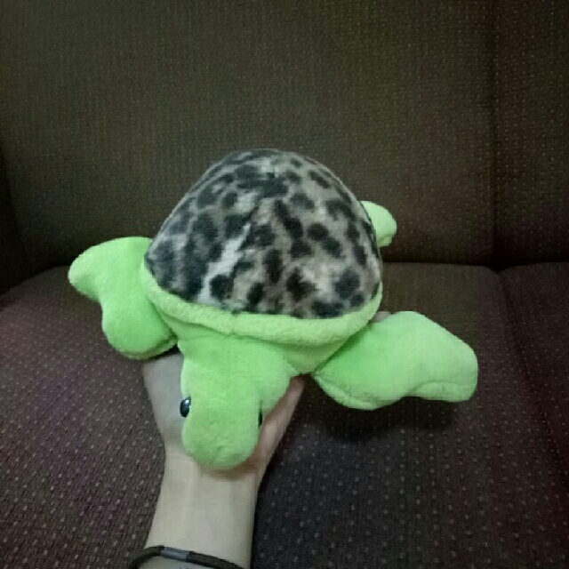 Boneka Kura-kura Mini