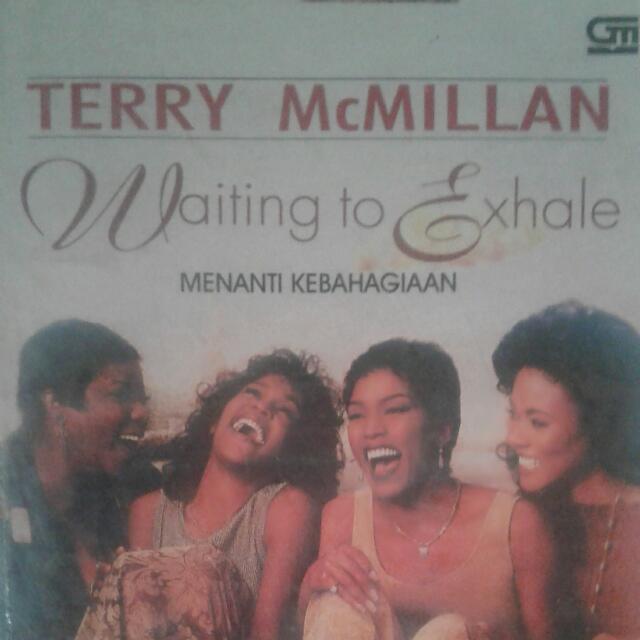 Novel Terry Mcmillan Best Seller