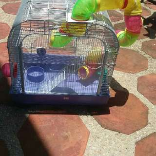 Hamster Cage All In