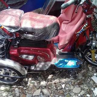 Tailg Electric Bike