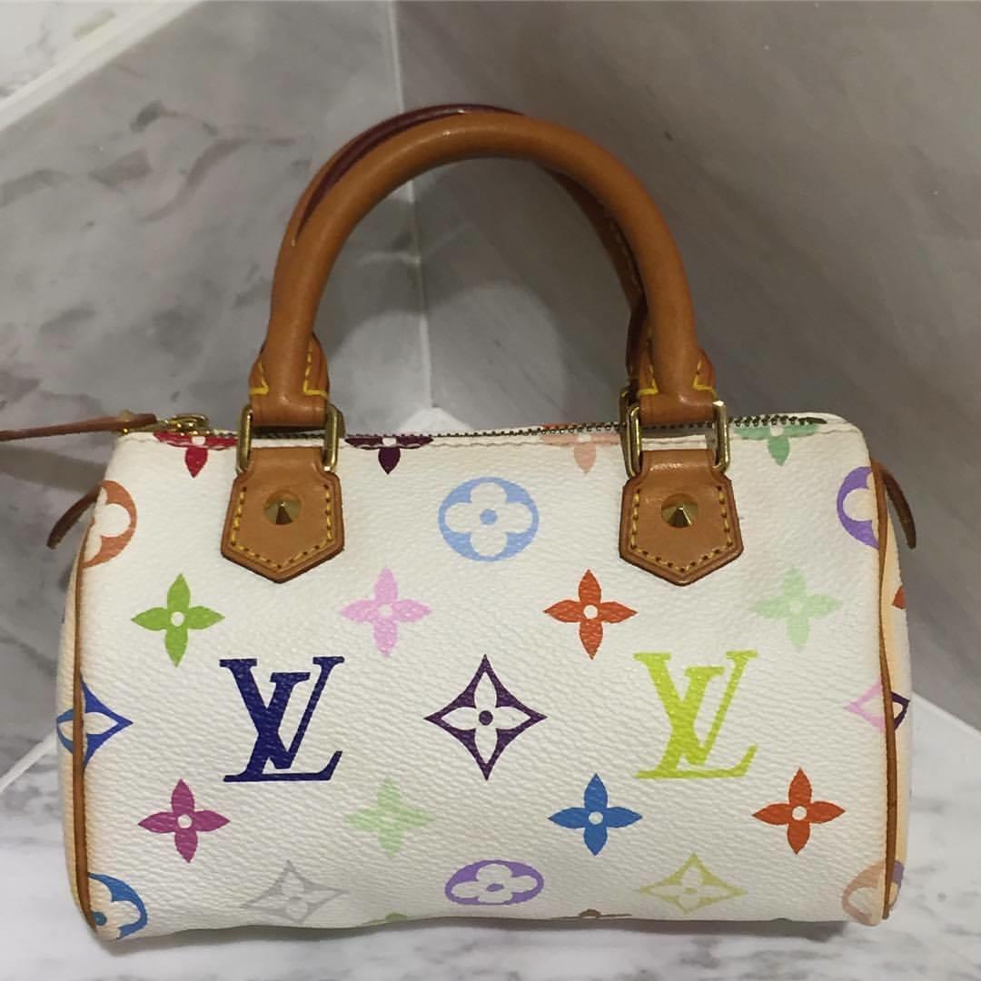Louis Vuitton Multicolor Mini Speedy (LIMITED EDITION) ac1f48f36191e