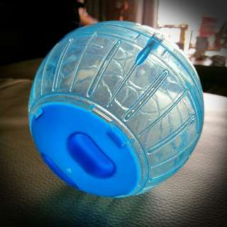 Exercise Ball For Hamsters