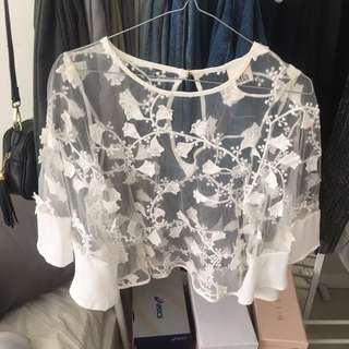 Transparent Floral White Mesh