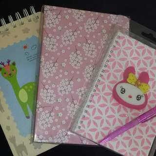Notebooks (Set Of 3)