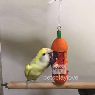 Apple carrot luffa bite toy