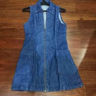 Denim Zipper Dress (topshop)