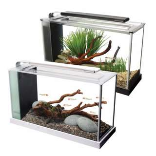 Fluval Spec V 19L Aquarium Tank (New Series) Promo Price Fluval Spec V 19L Aquarium Tank (New Series) Promo Price
