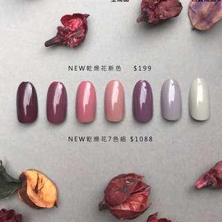 ANGELARIEL💕angel' share乾燥玫瑰色💕台灣製指甲油,好刷快乾不輸Mistermorden團購代購