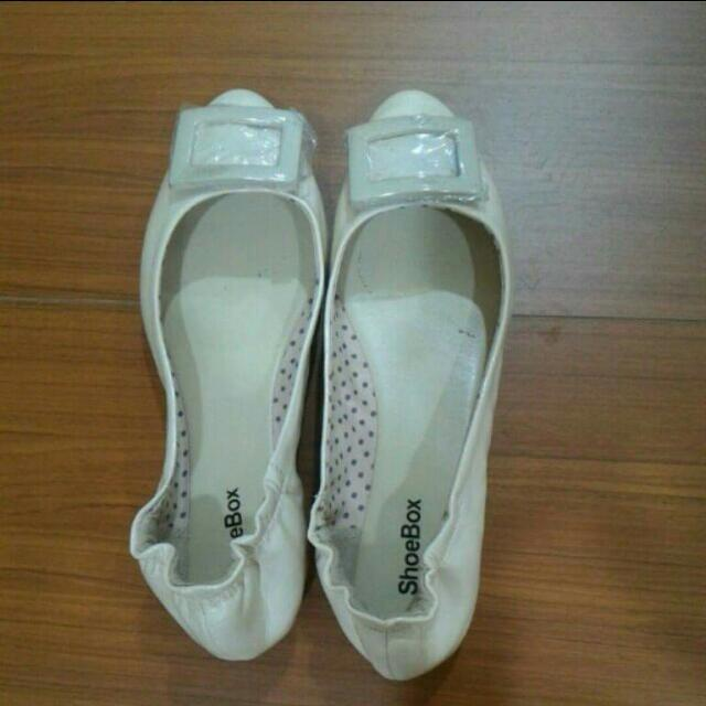 達芙妮鞋子 全新 低跟鞋 娃娃鞋
