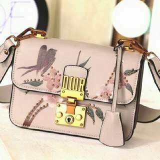 Dior Bag 1023