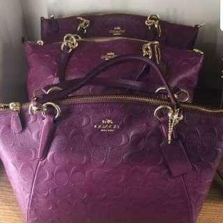 Coach purple bag 紫色壓紋袋