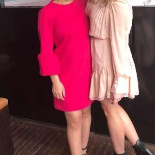 Zara New Season Pink Dress XS