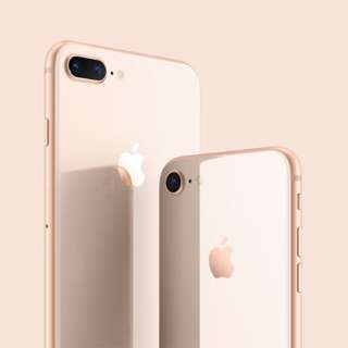 Looking For Lumee Case
