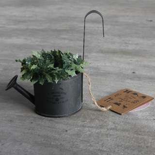 Watering Can Mini Hanging Planter Pot