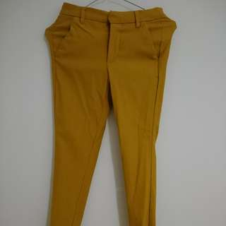 Mustard MNG Trousers