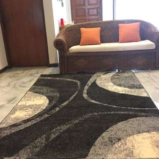 MOVING SALE - BIG DISCOUNT This new carpet shows a natural interplay of trendy colors with an elegant design.