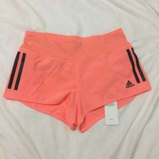 Adidas Climate Gym / Sport Shorts Size XS
