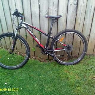 mountain bike jamis xc riser