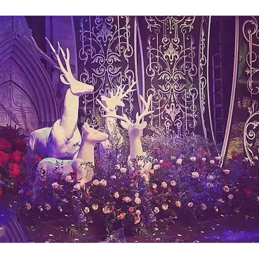 Dream fairytale garden disney princess wedding decorations props photo photo junglespirit Image collections