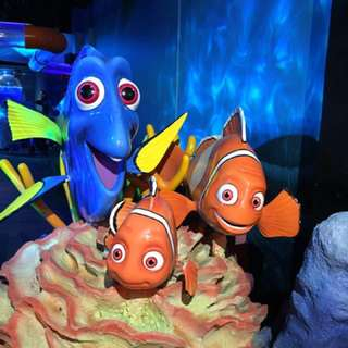 Melbourne Aquarium Family Pass