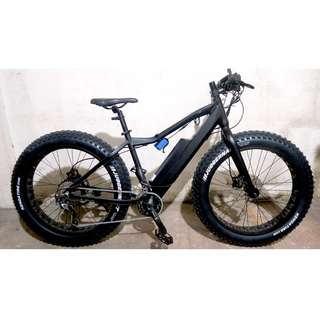 Electric Fat Bike Bafang Motors Ebike
