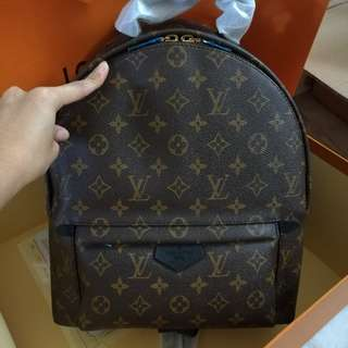 Customer Order !! Lv Palm Spring Bakcpack