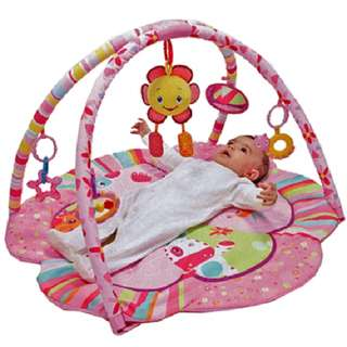 BNIP Baby Playgym