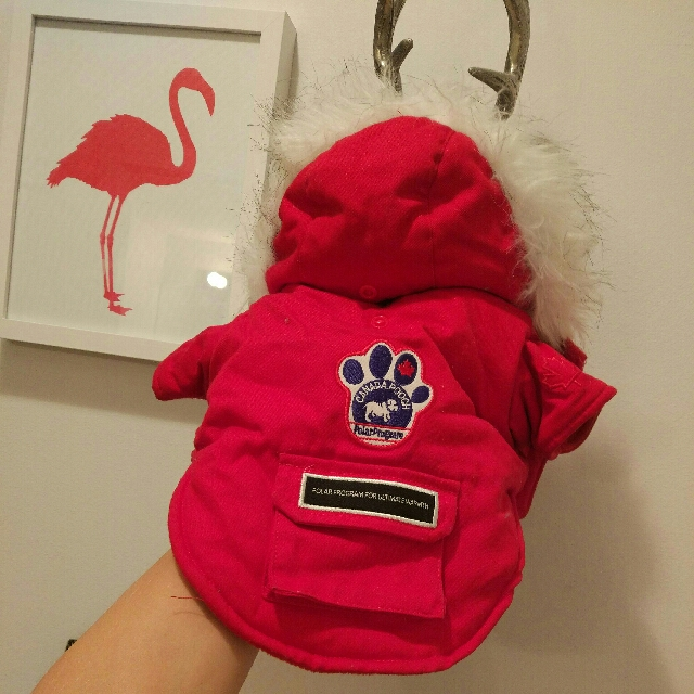 Canada pooch jacket