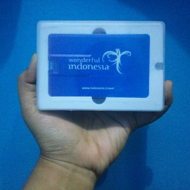 Flash Disk Kartu 4GB