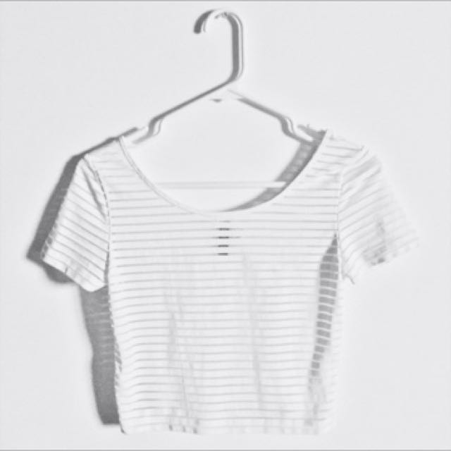 037639f831a 🌻H&M white mesh crop top, Women's Fashion, Clothes, Tops on Carousell