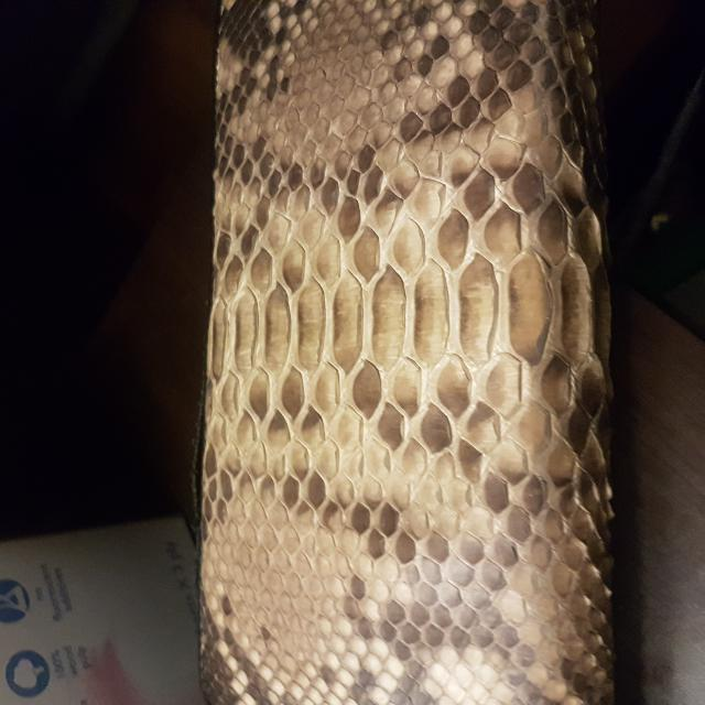 imported original snakeskin wallet from Thailand