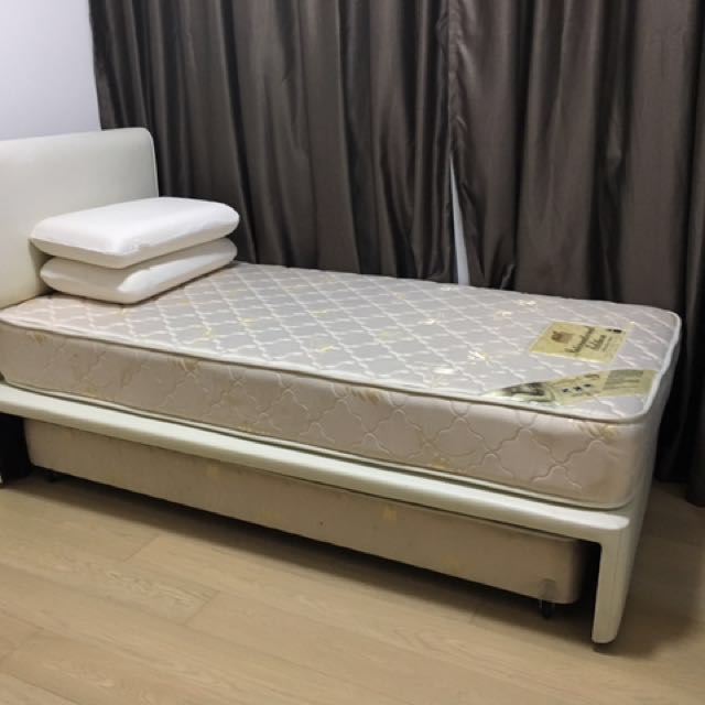 Max Coil Single Bed Bottom Bed With Spring Mattress Furniture