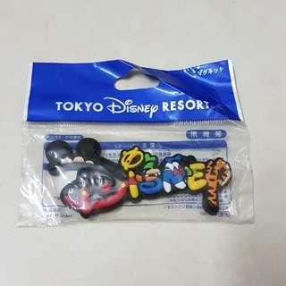 Tokyo Disneyland Fridge Magnet